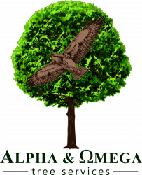 Alpha & Omega Tree Services Ltd.
