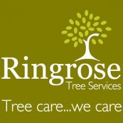 Ringrose Tree Services