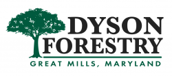 Dyson Forestry