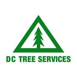 DC Tree Services Ltd.