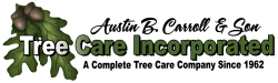 Tree Care Incorporated