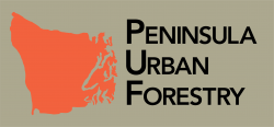 Peninsula Environemntal Group Inc