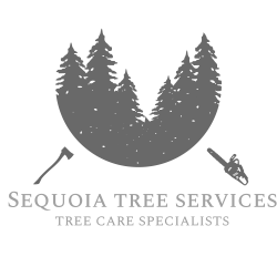 Sequoia Tree Services