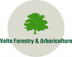 Velte Forestry and Arboriculture