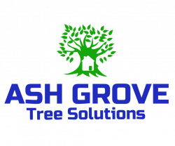 Ash Grove tree Solutions Inc.