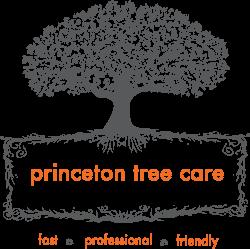 Princeton Tree Care