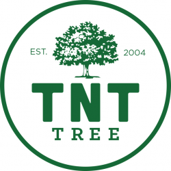 TNT Tree Service Ltd.
