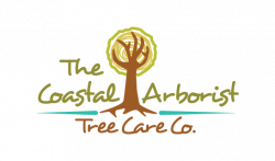 The Coastal Arborist Tree care Co.