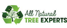 All Natural Tree Experts