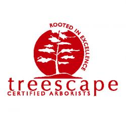 Treescape Certified Arborists