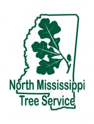 North MS Tree