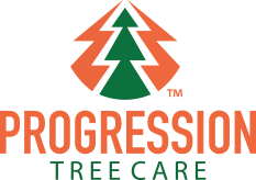 Progression Tree Care