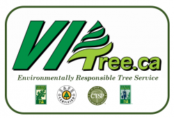 Vancouver Island Tree Service