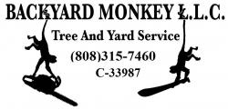 Backyard Monkey LLC