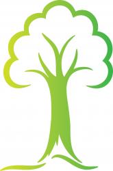 Anywhere Tree Care